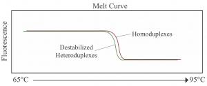 HRMA-melt-curve-300x125