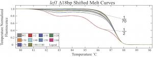 Lef1-HRMA-Dil-melt-curves-300x112