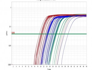 QuantitativeRealTimePCR