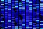 bioinformatics-mn