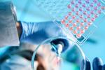 clinicalresearchcompliance-mn