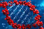 geneticcounseling-mn